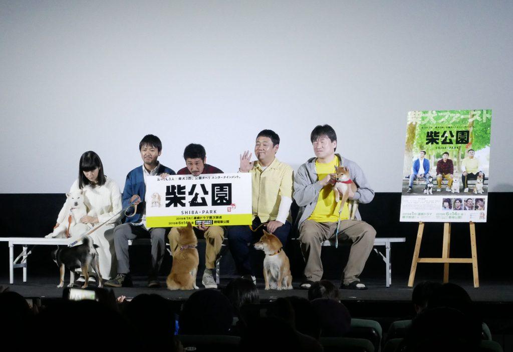 犬 テレビドラマ 柴公園 完成披露上映会